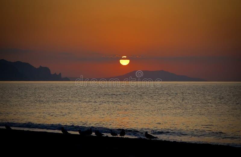 Mooie zonsondergang over de Zwarte Zee crimea stock foto's
