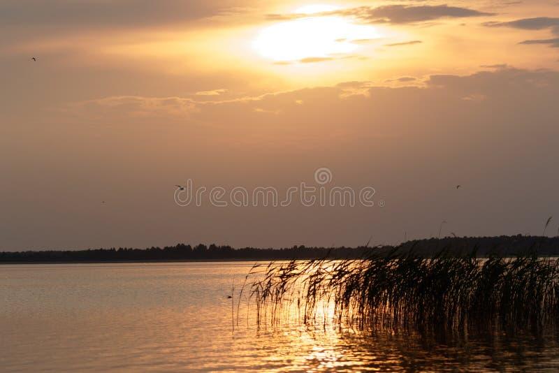 Mooie zonsondergang over het landschap van het de lentemeer 2017 De Oekraïne, royalty-vrije stock afbeeldingen