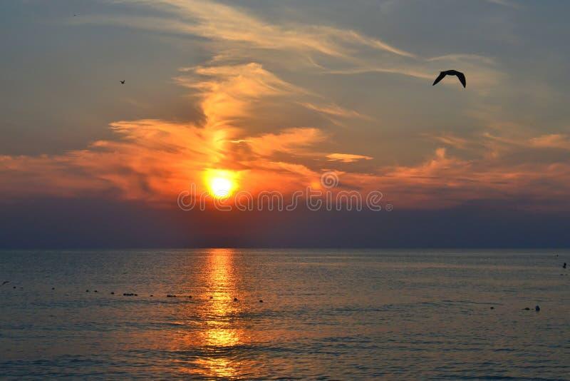 Mooie zonsondergang over het overzees. stock fotografie