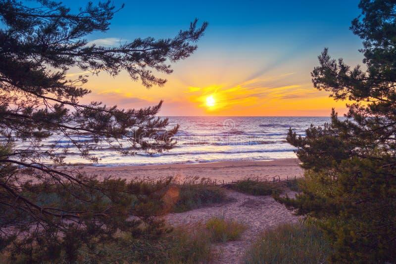 Mooie Zonsondergang over overzees stock fotografie