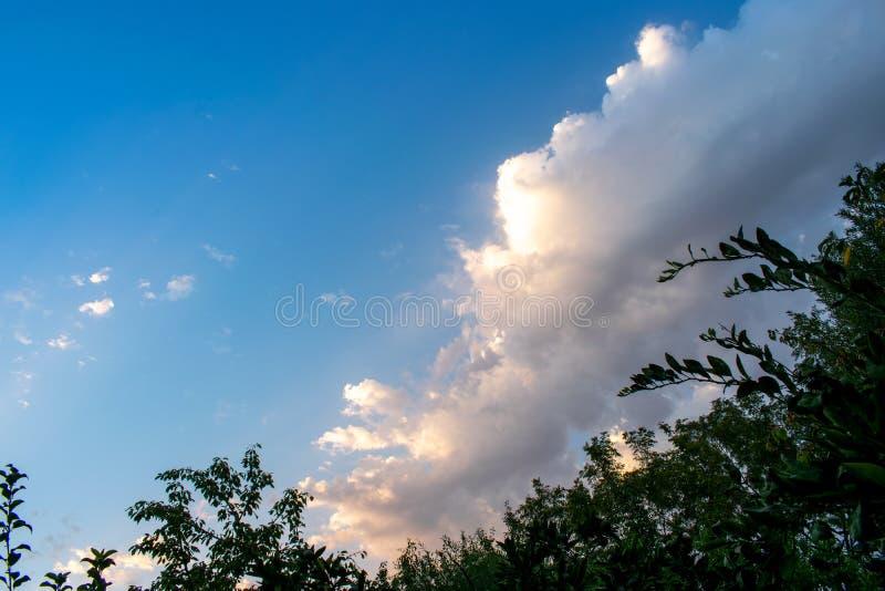 Mooie zonsopgang en dramatische wolken op de hemel Groene bomen die door een heldere blauwe hemel en een wolkenachtergrond worden stock foto's