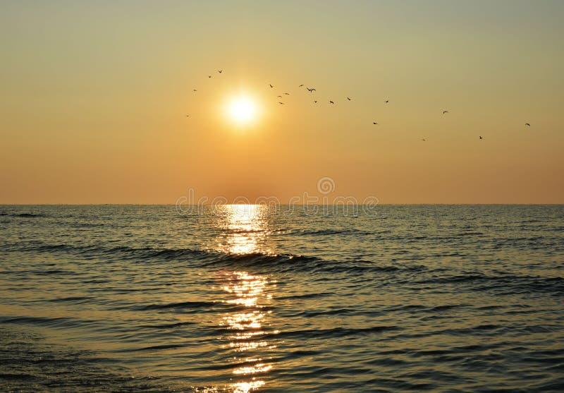 Mooie zonsopgang op het overzees royalty-vrije stock foto's