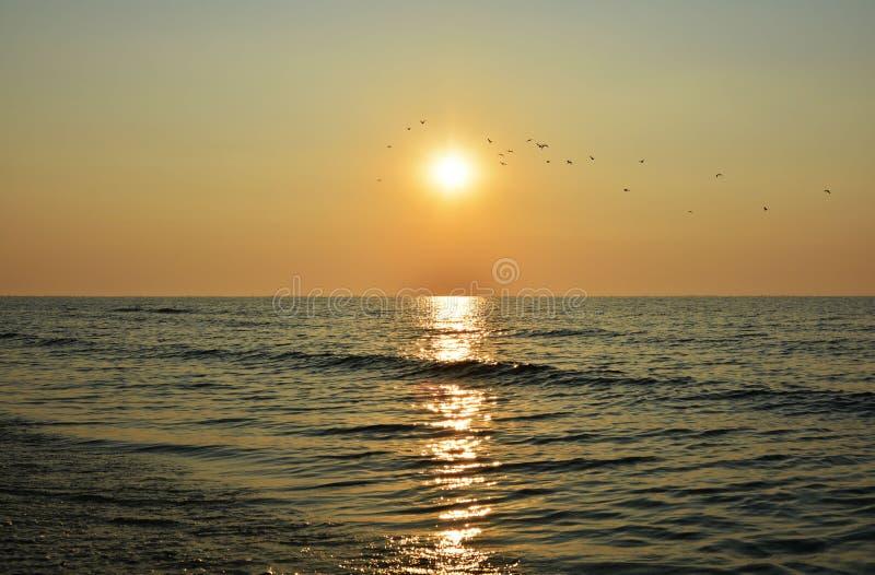 Mooie zonsopgang op het overzees stock afbeeldingen
