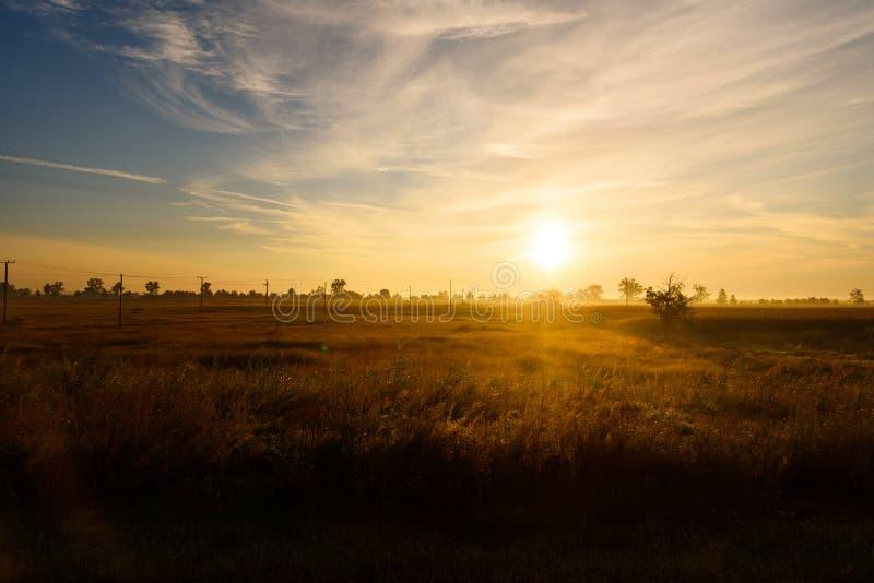 Mooie zonsopgang over een gouden gebied royalty-vrije stock fotografie