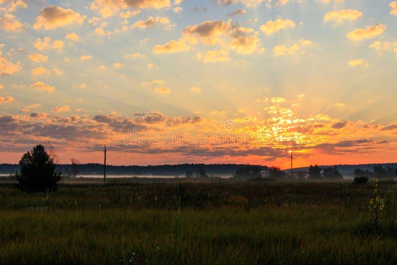 Mooie zonsopgang over groene mistige weide royalty-vrije stock foto