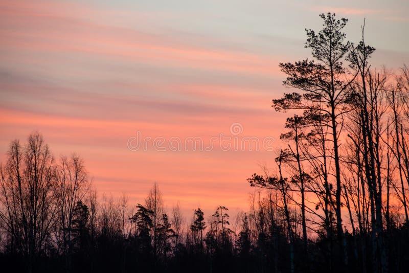 Download Mooie Zonsopgang Over Het Meer Van Het Land Stock Foto - Afbeelding bestaande uit hemel, platteland: 54077326