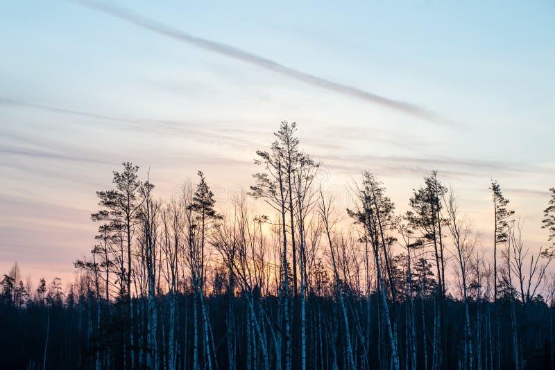 Download Mooie Zonsopgang Over Het Meer Van Het Land Stock Foto - Afbeelding bestaande uit seizoen, foggy: 54077330