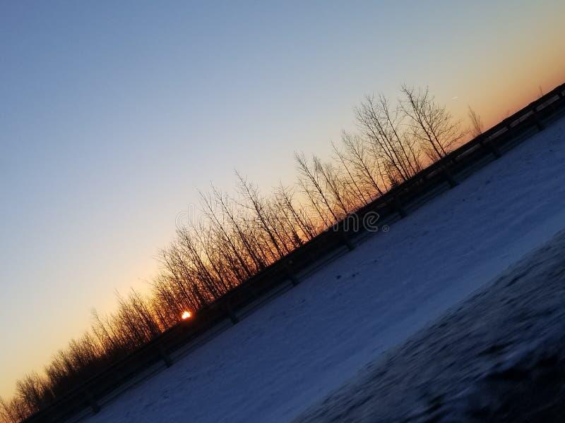 Mooie zonsopgang Van Alaska door bomen royalty-vrije stock afbeeldingen