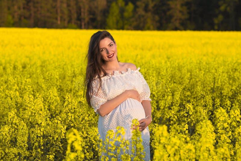 Mooie zwangere donkerbruine Jonge mooie zwangere vrouw wat betreft haar buik met liefde en zorg, die een hartvorm maken stock fotografie