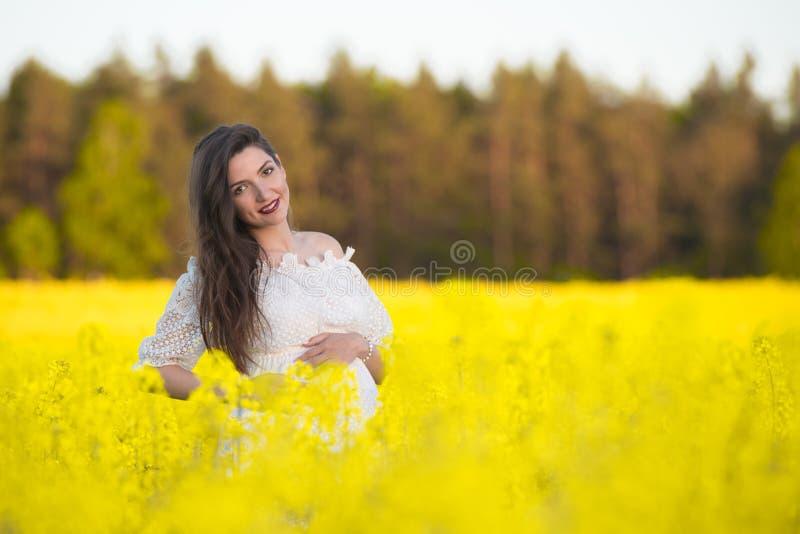 Mooie zwangere donkerbruine Jonge mooie zwangere vrouw wat betreft haar buik met liefde en zorg, die een hartvorm maken stock afbeeldingen