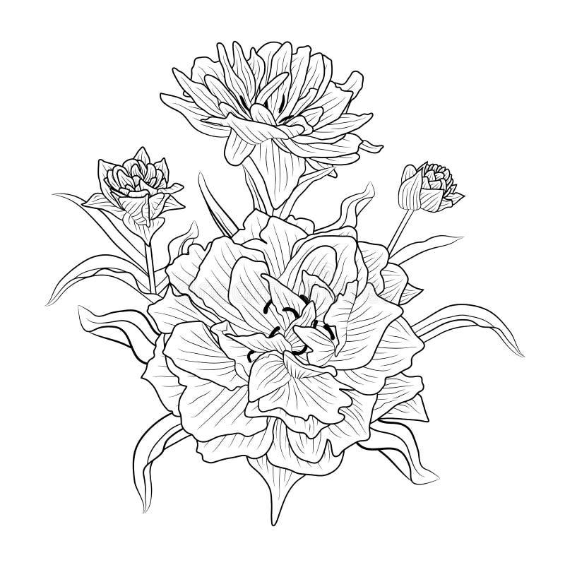 Mooie zwart-wit zwart-witte bloem royalty-vrije illustratie