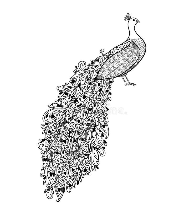 Mooie zwart-wit zwart-witte Decoratieve Pauw Getrokken hand royalty-vrije illustratie
