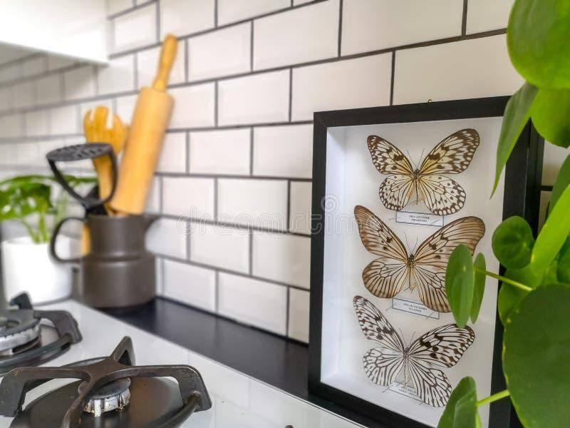 Mooie zwart-witte ontworpen vlinders in een zwart-witte metro betegelde keuken royalty-vrije stock afbeeldingen