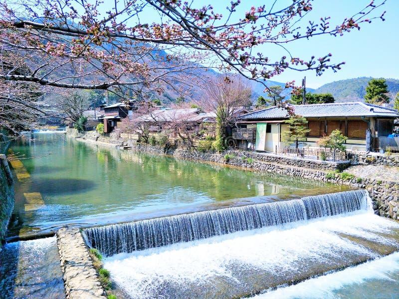 Mooist van atmosfeer en aard in Arashiyama, Japan stock fotografie