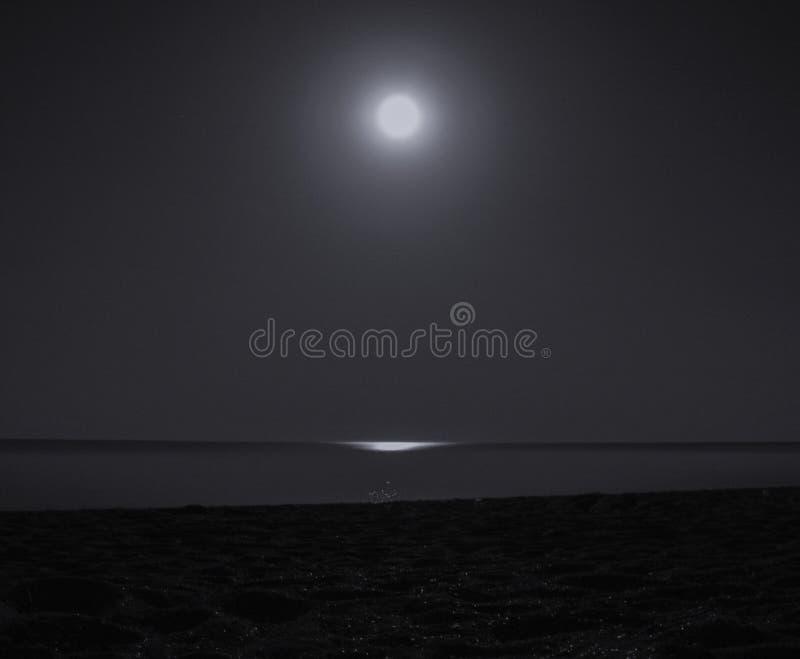 moon över havet royaltyfria bilder