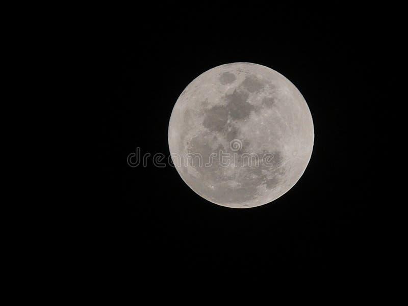 Moon2 lizenzfreie stockfotos