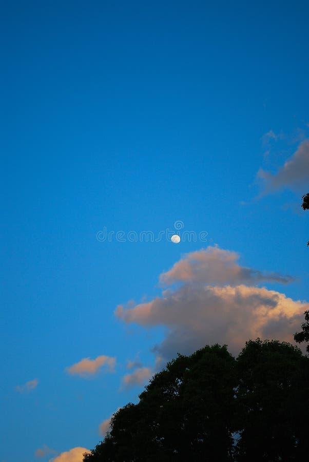 moon royaltyfri foto