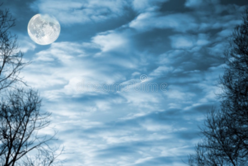 Moon. Full moon on a background cloudy sky with trees on edges stock photo