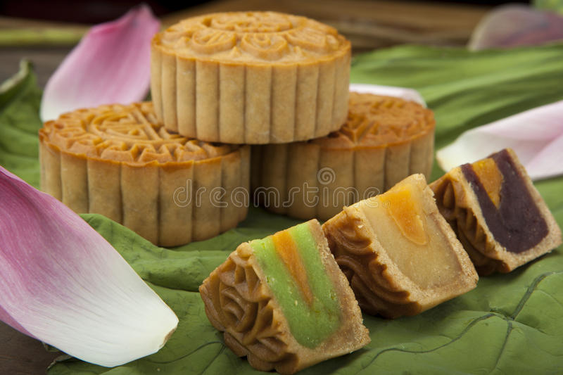 Moon cake traditional cake of Vietnamese - Chinese mid autumn festival food stock image