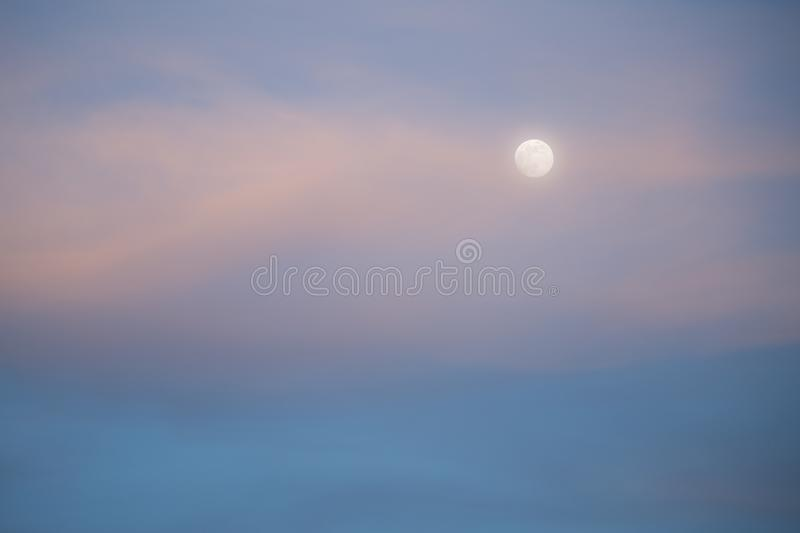 Moon and clouds in evening light. Moon and high wispy clouds tinted pink with evening light stock photo
