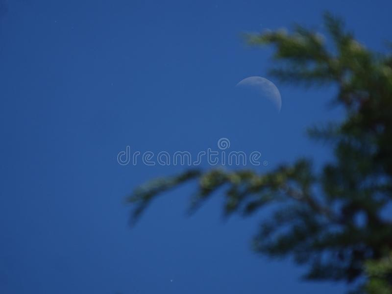 Moon at day royalty free stock images
