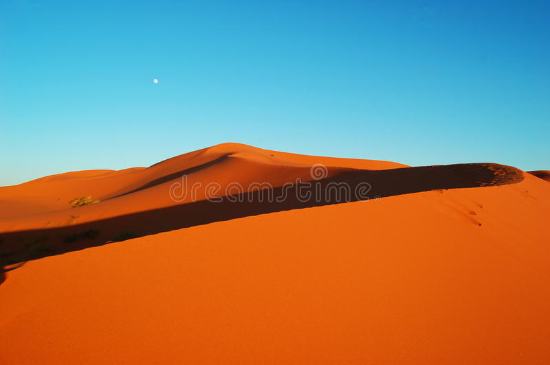 Moon in the desert royalty free stock photos