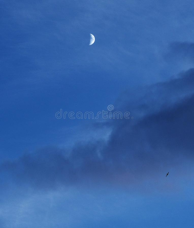 Moon and clouds on blue sky stock photos