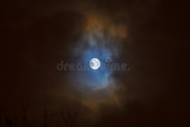 Moon eclipse in full moon. Super blue blood moon. Moon eclipse in full moon. Super blue bloody moon over tree silhouette on night sky background. Minsk, Belarus stock image