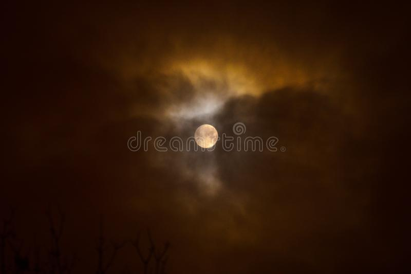 Moon eclipse in full moon. Super blue blood moon. Moon eclipse in full moon. Super blue bloody moon over tree silhouette on night sky background. Minsk, Belarus royalty free stock photography