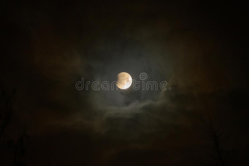 Moon eclipse in full moon. Super blue blood moon. Moon eclipse in full moon. Super blue bloody moon over tree silhouette on night sky background. The beginning royalty free stock photography
