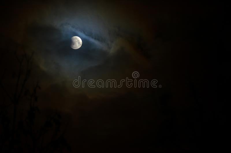 Moon eclipse in full moon. Super blue blood moon. Moon eclipse in full moon. Super blue bloody moon over tree silhouette on night sky background. The beginning stock photos
