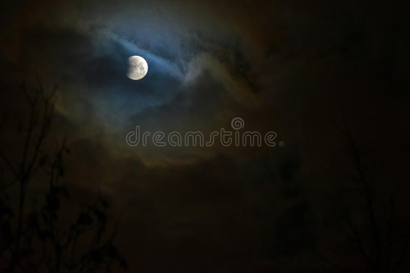 Moon eclipse in full moon. Super blue blood moon. Moon eclipse in full moon. Super blue bloody moon over tree silhouette on night sky background. The beginning royalty free stock image