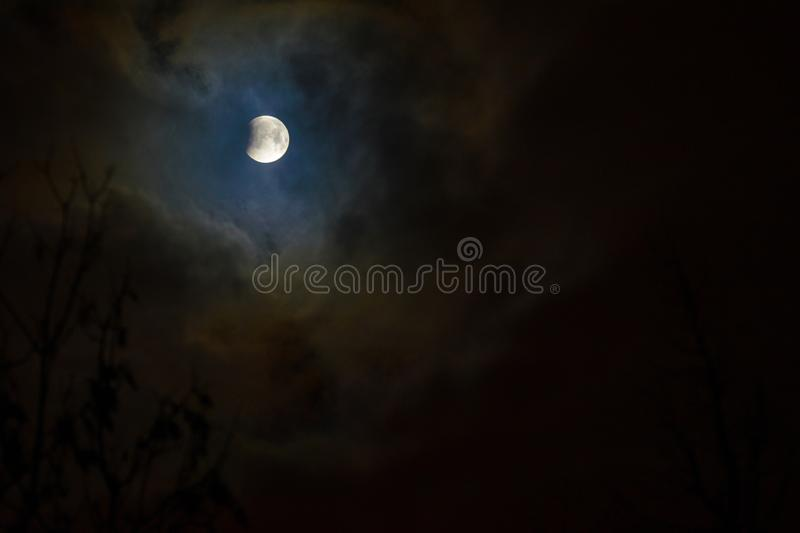 Moon eclipse in full moon. Super blue blood moon. Moon eclipse in full moon. Super blue bloody moon over tree silhouette on night sky background. The beginning stock photography