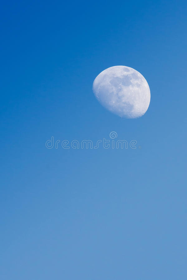 Moon. Half moon appear in the afternoon time in the sky with brach of tree at the foreground stock image
