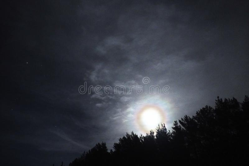 Moon halo night sky stars and blue clouds over forest royalty free stock photography