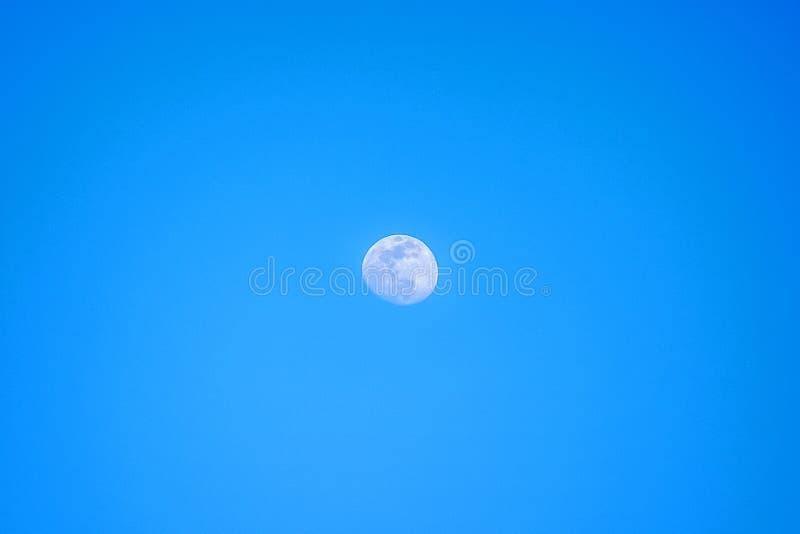 Moon i dagsljus royaltyfri fotografi