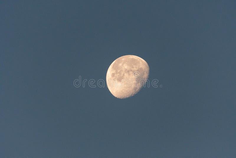 moon royaltyfri bild