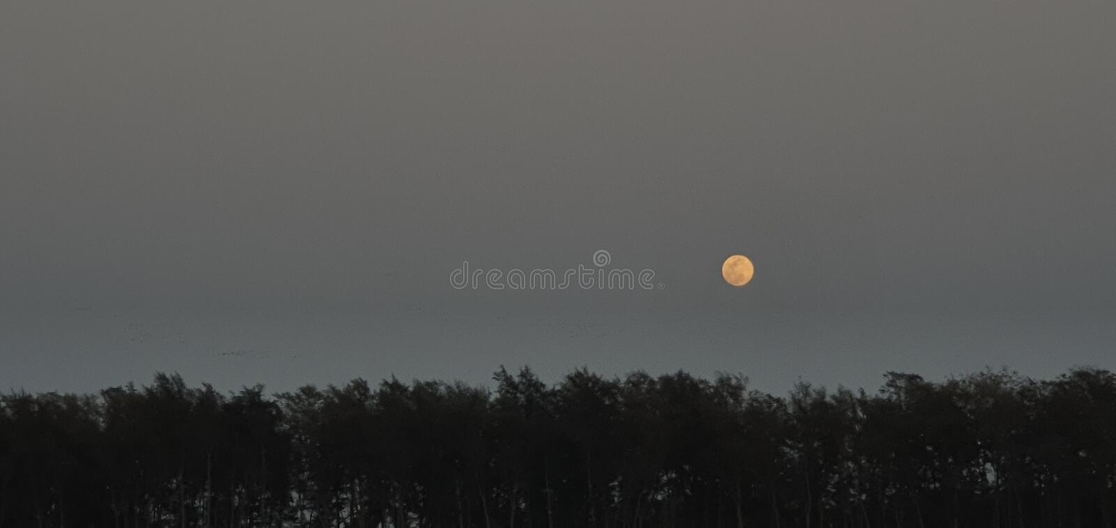Moon. Jampore, photography, sunset, outdoors, landscape, scenery, sunlight, water, nopeople, dusk, sky, horizon, nature, cloud, blue, orange, brown, tranquil royalty free stock image