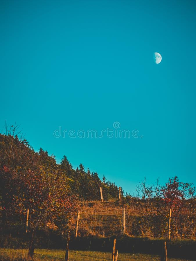 Moon and nature royalty free stock image