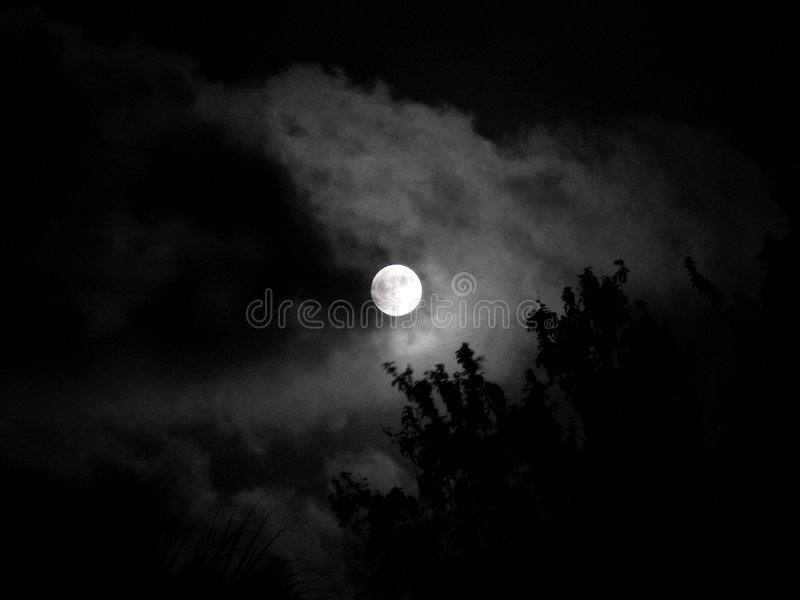 Moon - night beauty stock photography