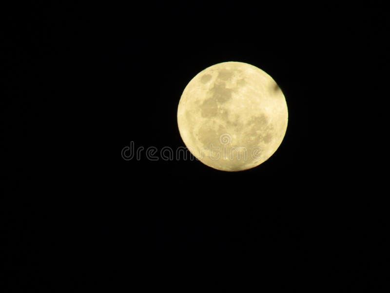 Moon, Night, Full Moon, Sky royalty free stock photo