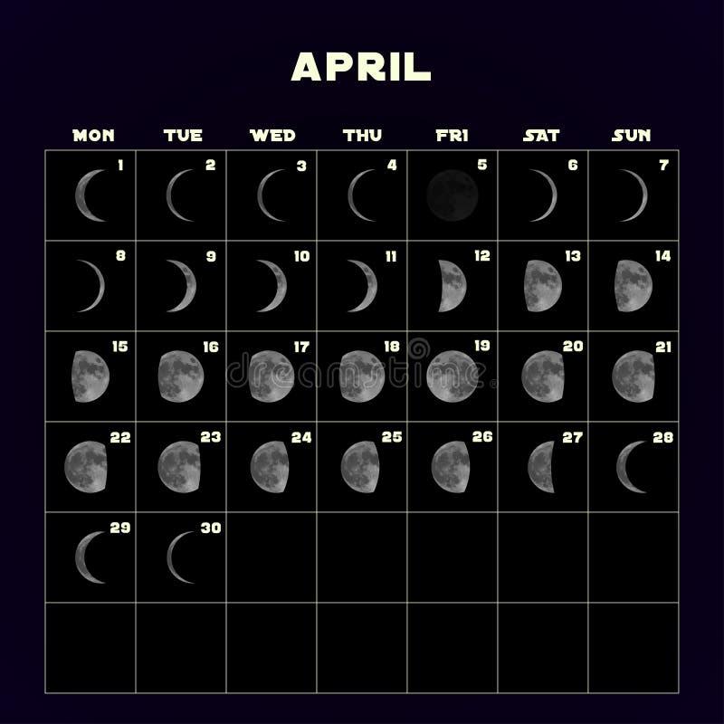 Moon o calendário das fases para 2019 com lua realística abril Vetor ilustração royalty free