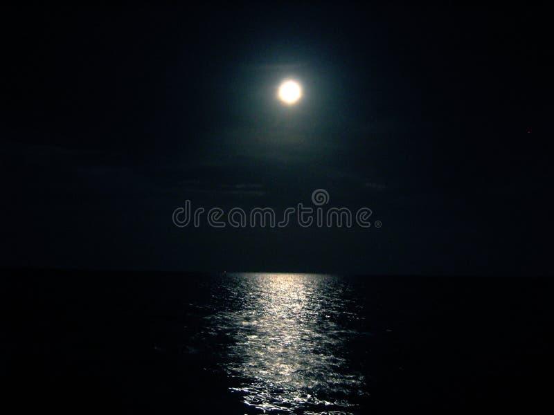 Moon and Ocean night. Moon above Ocean royalty free stock photo