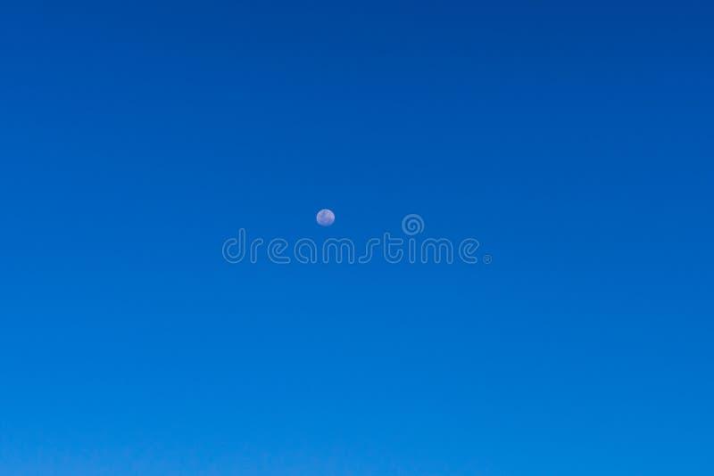 Moon om blå himmel under dagen fullmåne på blå himmel, god luftmiljö royaltyfri foto