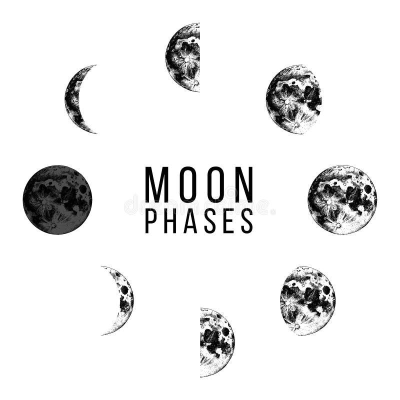 Moon os ícones das fases - ciclo inteiro da lua nova à Lua cheia ilustração royalty free