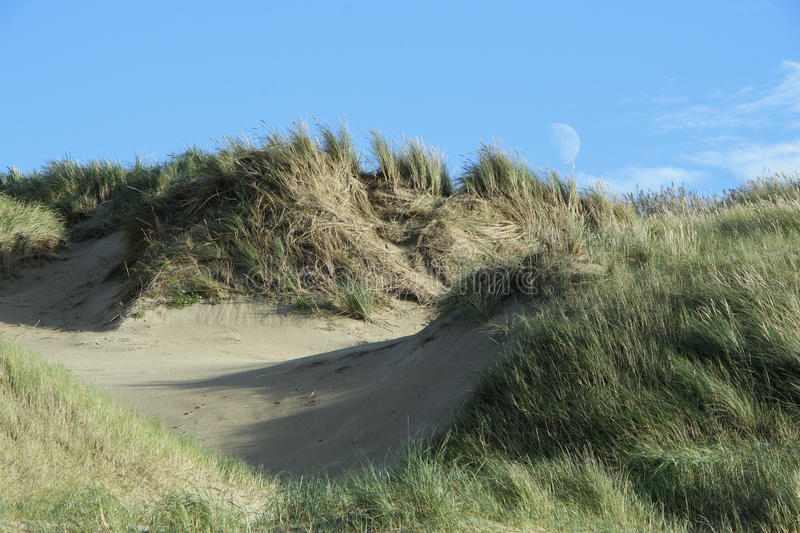 Moon over dunes royalty free stock photos