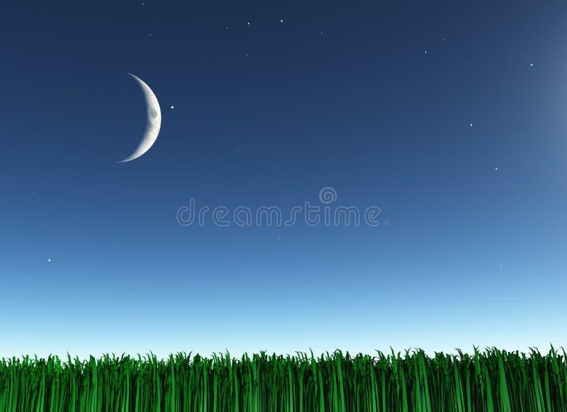 Moon over green landscape vector illustration