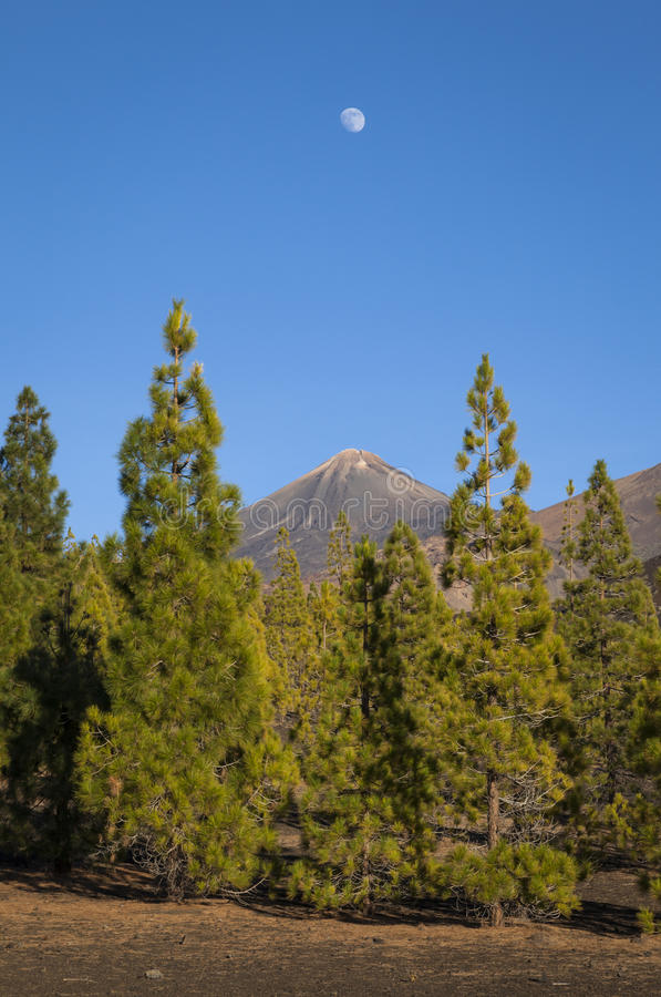 Download Moon over Mount Teide stock image. Image of pico, body - 47707987