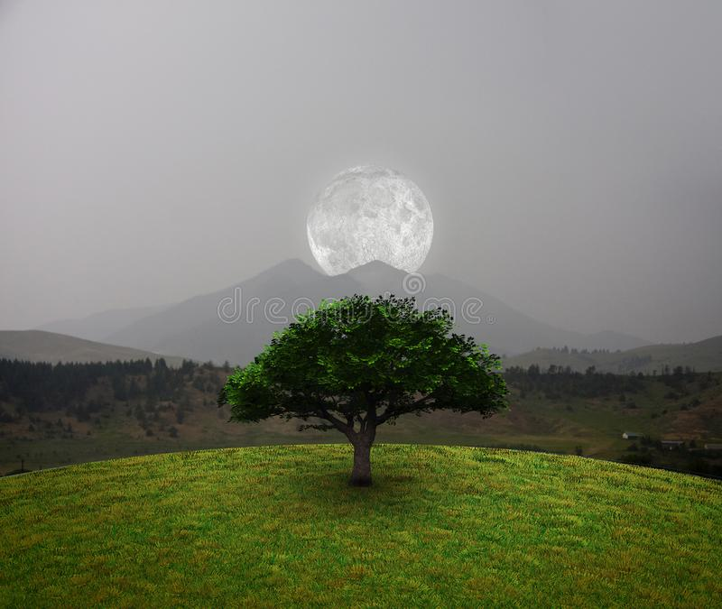 Moon over mountains royalty free stock photo