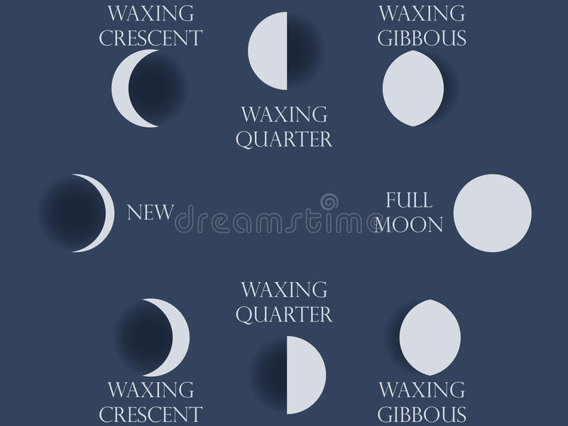 Moon phases. The whole cycle from new moon to full. stock illustration